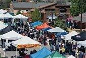 Town Fair and Hot Air Balloon Festival