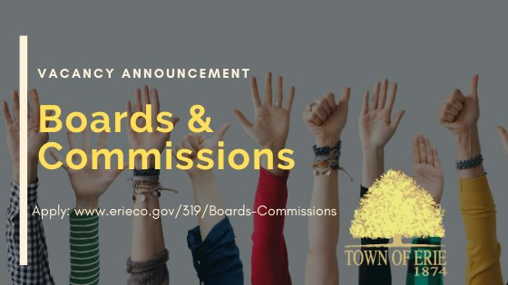 Boards and Commissions vacancy