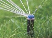 Sprinkler Assessment