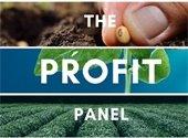 The Profit Panel logo