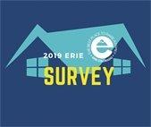 online citizens survey