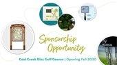 Disc Golf Sponsorship Opportunity
