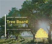 Tree Board Vacancy