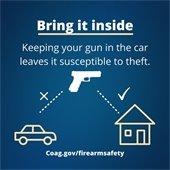 Safe Gun Storage