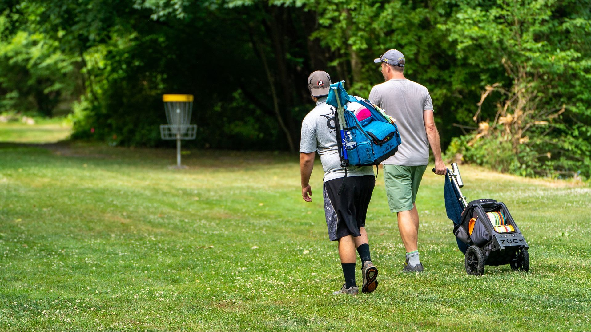 Disc Golf Golfers