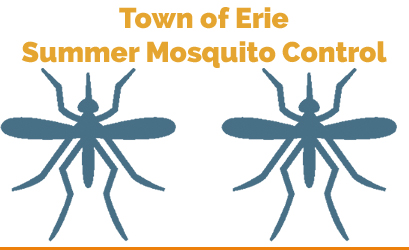 Summer Mosquito Control.jpg